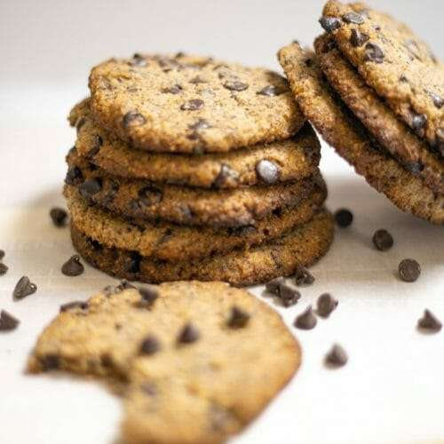 Hazelnut Flour Chocolate Chip Cookie